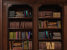 """Rustica - """"Ex Libris"""" Mesh Modular Library Furniture Set with Books, Shelves, Cabinets, Desk, Etagere and Panel Walls"""