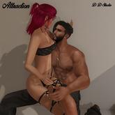 D D Studio Atracction