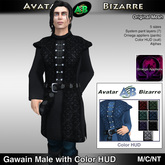AB Gawain Medieval with Color HUD Male