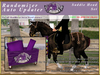 *E* Randomizer Uploader Pack [Boxed] Under Saddle Head Pack