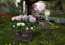 CJ Iron Tricycle Planter - Mother's Day - m/t