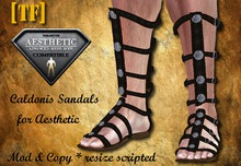 AE - SANDALS - Caldonis -  [TF] - [Wear to Unpack]