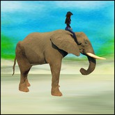 Rodeo Elephant rideable animated with sound