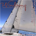 Windsong   tms bandit ushaia sails %28pearl with black gussets%29 4