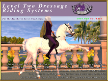 *E* Level Two RealHorse Dressage Riding Systems [BOXED]