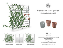 Soy. Herisson with green [addme]