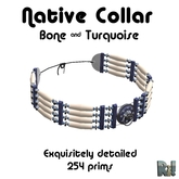 *~Ri!~* Native Bone & Turquoise Collar