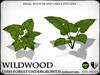 Wildwood   elephant ears   ref1
