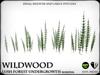 Wildwood   horsetail   ref1