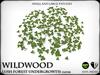 Wildwood   clover   ref1