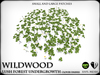 Wildwood   clover   ref2
