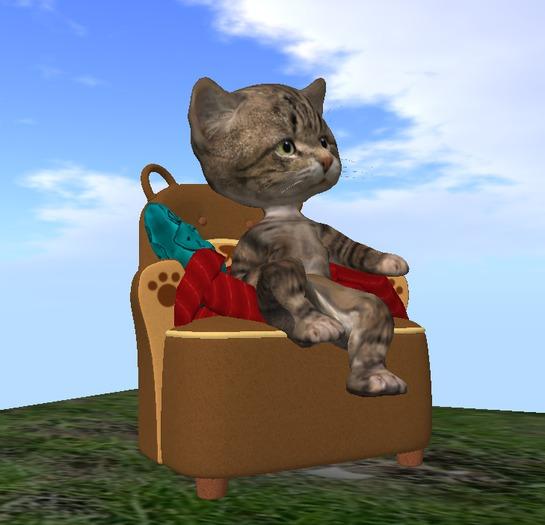 #ARMCHAIR for Dinkie Cat (wear don`t rez)