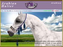 *E* Arabian Halter [BOXED] RH Arabian