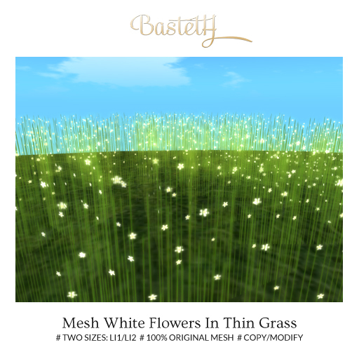 Bastet H > Mesh White Flowers In Thin Grass