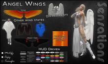 Sensations Angel Wings