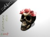 ::db:: Skull Decor with Roses Bittersweet