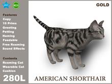 [TomatoPark] American Shorthair Gold 3.3 ( roaming + wearable )