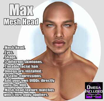 ::LV:. Max Mesh Head