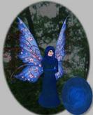 Wyrmwood Fairies Common Blue