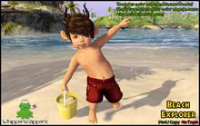 ! Whippersnappers ! - Beach explorer