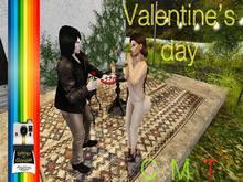 ::SnS:: Valentine's day [gift]