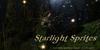 **CC** - Starlight Sprites