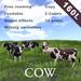 [TomatoPark] MilkCow ( roaming, milking )