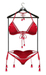 !RH / Kauai - Mesh - Bikini - (Berry Red)