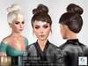 rezology Braided Topknot 2 (mesh hair) SK - 1412 complexity