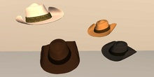 Thadovian LTD  Cowboy Hats  (Sculpted) - All Color Pack