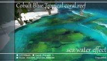 *K*Cobalt Blue Tropical coral reef-BOX