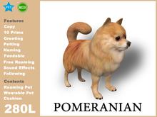 [TomatoPark] Pomeranian Mesh 3.2 ( roaming + wearable)