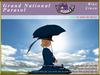 *E* Grand National Sidesaddle Parasol Set [BOXED] Blue Linen