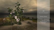 LB SpringBrise v2 With Flowers Menu Mesh