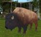 Bison 12 prim mesh