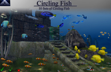 !  `~ Apparition~`  ! - Circling Fish