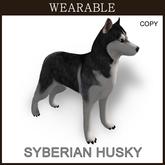 Husky_Wear_Box