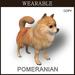 [TomatoPark] Wearable Pomeranian Mesh
