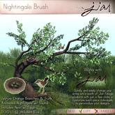 JIAN :: Nightingale Brush