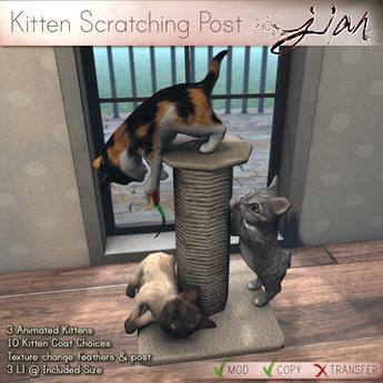 JIAN :: Kitten Scratching Post