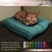 JIAN :: Kitten Pillow