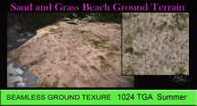 Sand and Grass Ground Texture SEAMLESS 1024 TGA