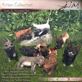JIAN :: Kitten Collection