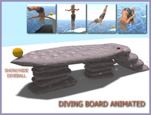 Diving Board Rock script hide