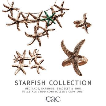 Cae :: Starfish Ensemble