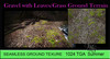Ground Terrain Sim Texture Gravel with Leaves Seamless HD 1024