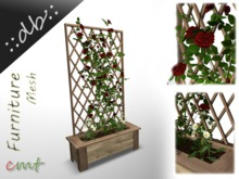 ::db:: Red Climbing Roses in wooden Planter with Daisies