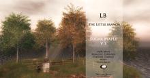 LB SugarMaple V3 Tree with 4 Seasons Mesh