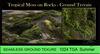 Tropical moss mp