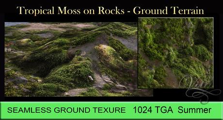 Vita's 3D Ground Texture-Tropical Moss on Rocks SEAMLESS 1024